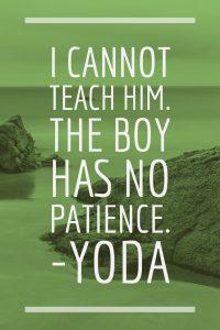 I cannot teach him. The boy has no patience.-Yoda